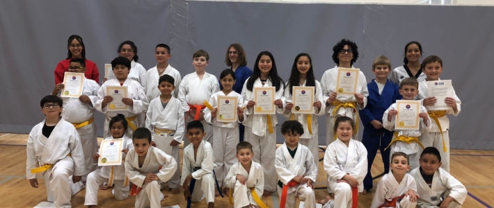Beginner Spring Belt Exam